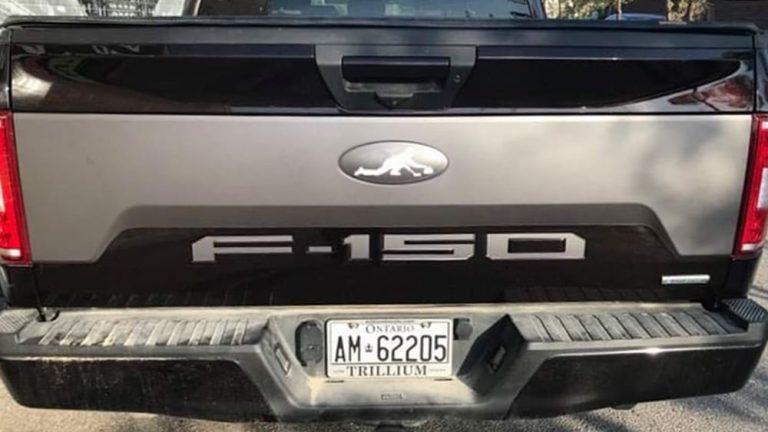 FORD - F150 - Partial - Vinyl Wrap Toronto - Decals - Vehicle Wrap in Etobicoke - Avery Dennison & 3M